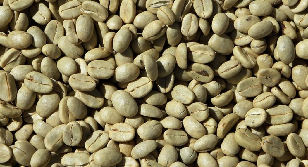 Qué alimento tiene mejores beneficios: ¿Kéfir, café verde o colágeno?