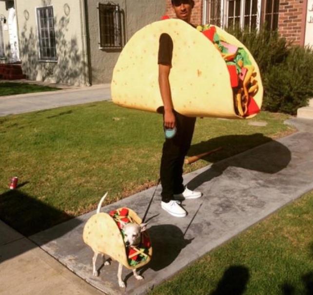Chihuahua taco