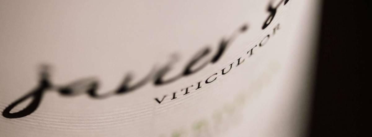 javier sanz viticultor verdejo 2020: Brillante y de gran riqueza aromática 2