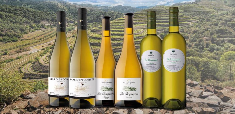 los mejores vinos aragoneses 3