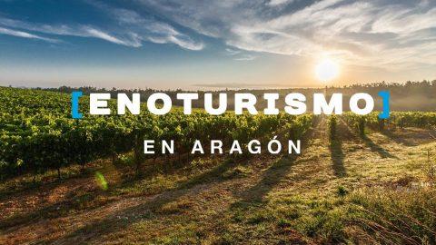 los mejores vinos aragoneses 36