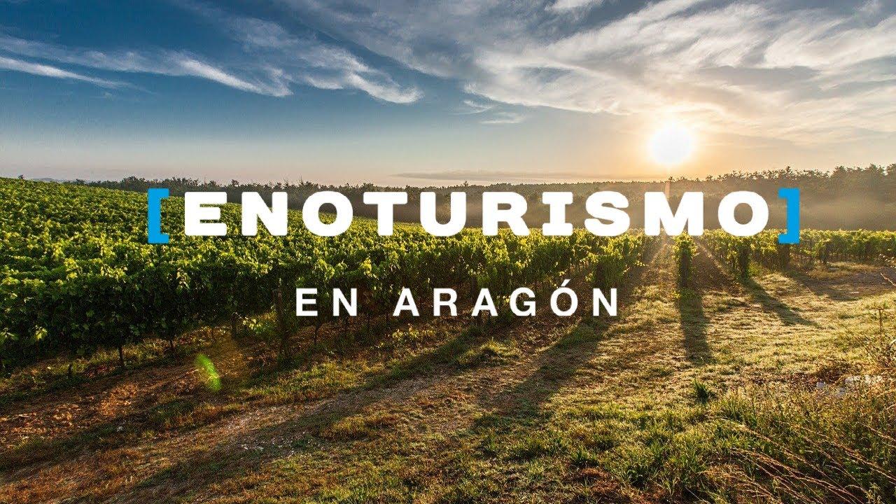 Los Mejores Vinos Aragoneses - VINO Y BODEGAS GASTROBLOG