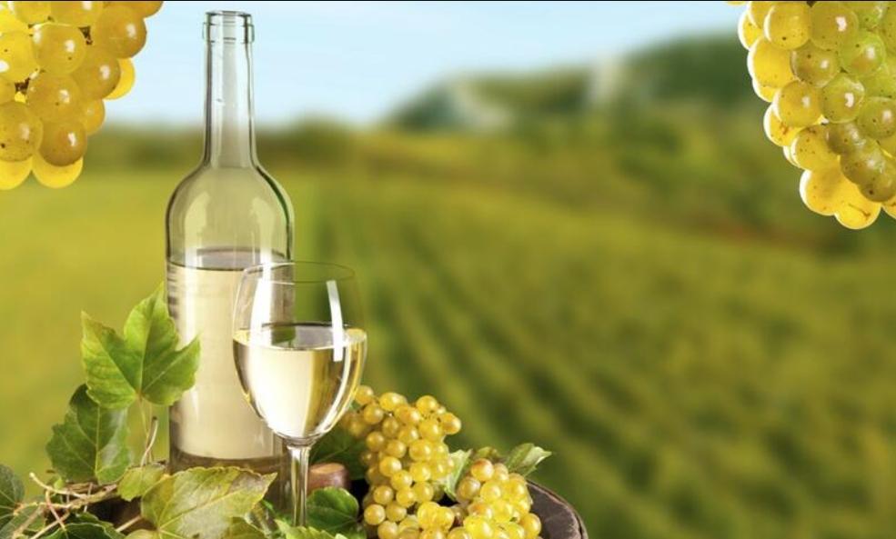 ¿Qué vinos produce la uva chardonnay? 51