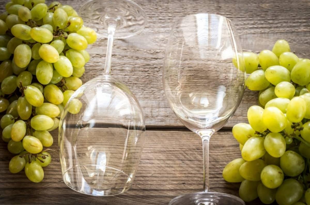 ¿Qué vinos produce la uva chardonnay? 4