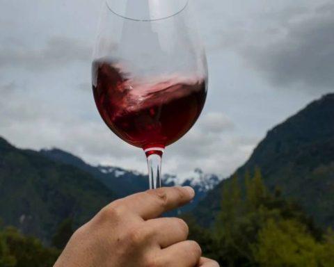 Todo lo que tienes que saber del Vino Malbec Argentino 12