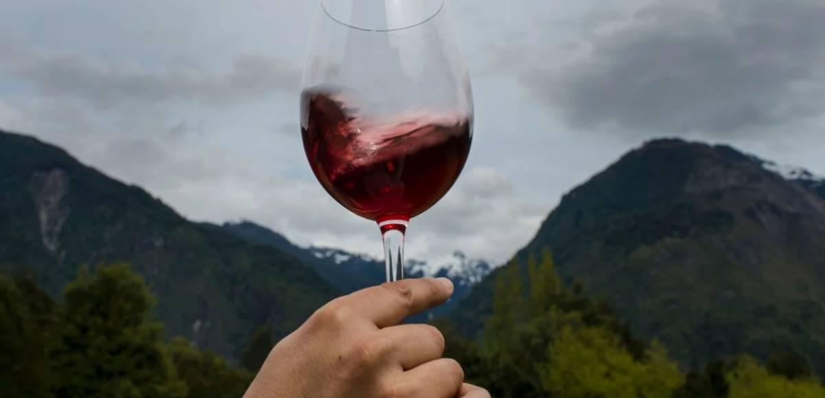 Todo lo que tienes que saber del Vino Malbec Argentino 2