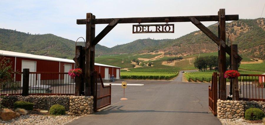rogue valley wine: Una visita online a estas bodegas 5